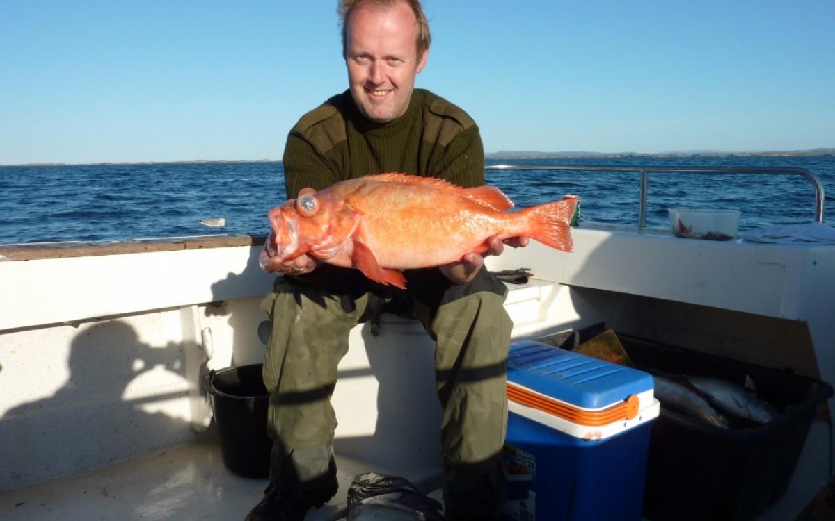 отдых в тунисе с рыбалкой